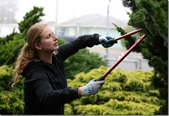 Post image for Your Gardening Body: Using Loppers Safely Without Pain or Strain