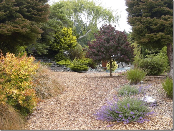Using Landscape Mulch as a Casual Pathway