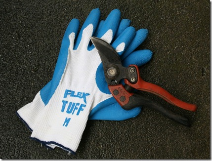 Bahco Pruner and Flex Tuff Gloves