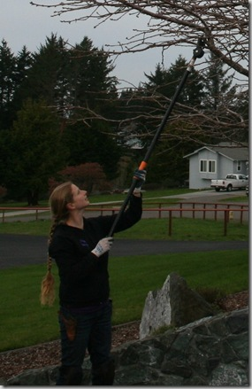 Pole Pruning Safety