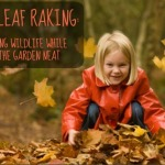Fall Leaf Raking: Finding the Middle Ground