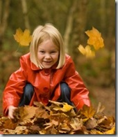 Post image for Fall Leaf Raking: Finding the Middle Ground
