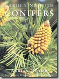 gardening-with-conifers
