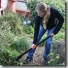 Thumbnail image for The Fiskars UpRoot Weeder: An Organic Way of Getting Dandelions Out of Your Lawn and Garden