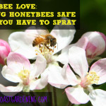 Honeybee Love: Keeping Honeybees Safe While Using Pesticides