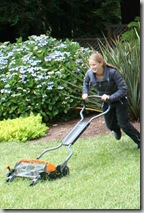 Testing the Fiskars Momentum Mower - Copy