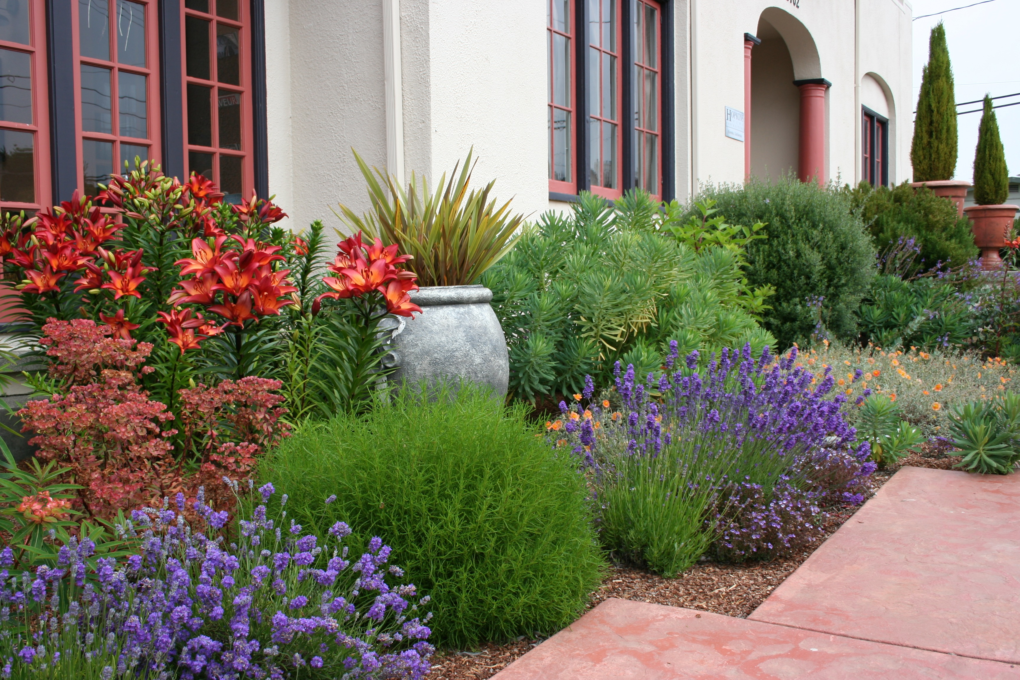 1000 images about drought tolerant mediterranean for Plant landscape design