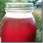 Amy Stewart's pomegranate syrup