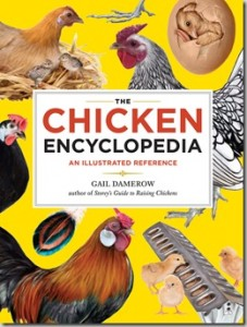 ChickenEncyclopedia.jpg
