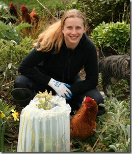Post image for EZ-Walls Plant Protector Extends the Season and Keeps Chickens Off New Plants