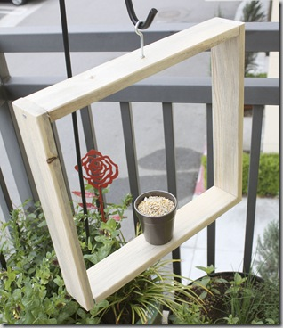 Small Space Container Gardens Review photo by Fern Richardson (3)