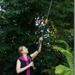 Your Gardening Body: How to Prune Trees Without Strain or Pain