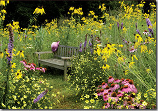 Wildlife Garden Design Tip: Choose A Simple Color Palette