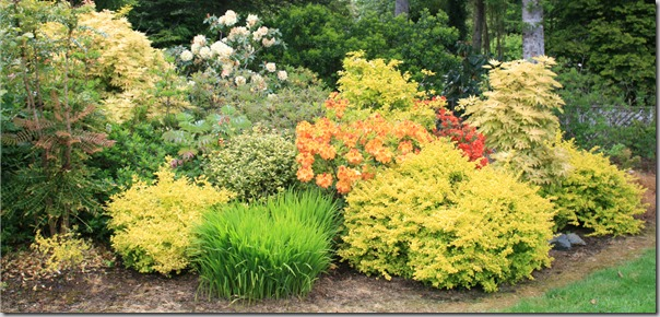Post image for Low-Maintenance Planting Design: More Than Just Plant Selection