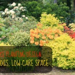 Low-Maintenance Planting Design: More Than Just Plant Selection