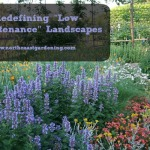 "Redefining ""Low-Maintenance"" Landscapes"
