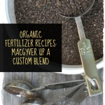 DIY organic fertilizer recipes