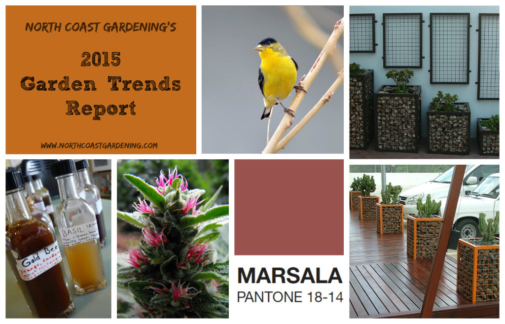 2015 Gardening trend report from www.northcoastgardening.com