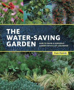 The Water Saving Garden